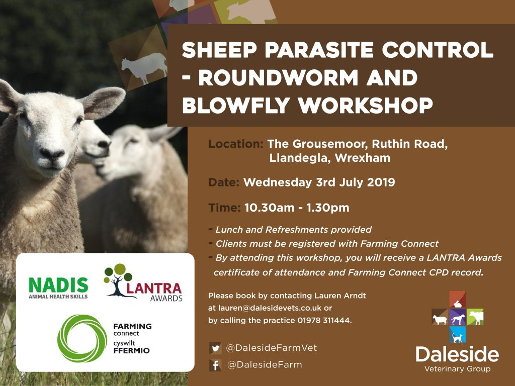 Sheep Parasite Control - Roundworm and Blowfly Workshop